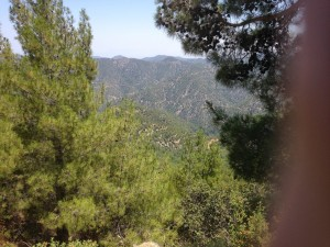 A Troodos View